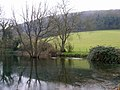 Pond near Poynings - geograph.org.uk - 377067.jpg