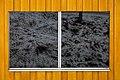 Prellerberg (31674247377).jpg