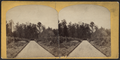 Princeton College and vicinity, from Robert N. Dennis collection of stereoscopic views 3.png