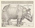 Print, The Rhinoceros, 1515 (CH 18384759).jpg
