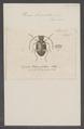 Ptinus - Print - Iconographia Zoologica - Special Collections University of Amsterdam - UBAINV0274 026 08 0017.tif