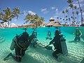Punta Cana PADI Excursions.jpg