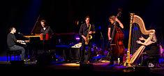 Quadro Nuevo - Leverkusener Jazztage 2015-3153.jpg