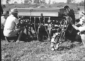 Queensland State Archives 1724 Department of Agriculture and Stock Cattle Husbandry Branch field day at a farm in the Upper Coomera Gold Coast August 1954.png