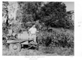 Queensland State Archives 4104 Spraying noxious weeds with poison spray apparatus Sherwood 1949.png