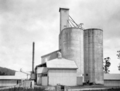 Queensland State Archives 4163 Maize silos Tolga Atherton Tableland North Queensland c 1930.png