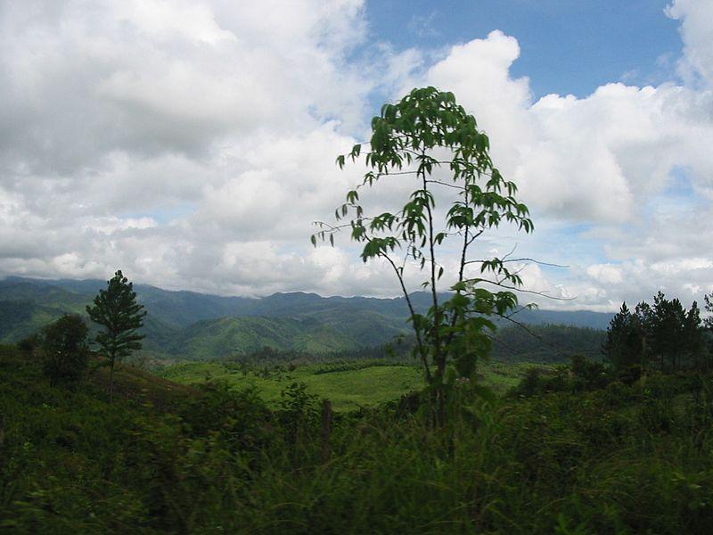 Reserva de la Biosfera de Río Plátano