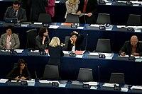 Unionens to lovgivende institutioner:   Europaparlamentet og EU-Rådet.   Parlamentet er direktvalgt mens rådet repræsenterer medlemsstaternes regeringer.