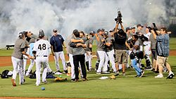 RailRiders celebrate championship game 2016.jpg
