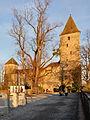 Rapperswil - Schloss - Lindenhof IMG 3020 ShiftN.jpg