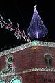 Reindeer and Tree (28206997314).jpg