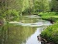River Dun at Butts Green - geograph.org.uk - 423338.jpg