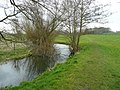 River and footpath - geograph.org.uk - 739643.jpg