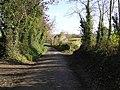 Road near Portlough - geograph.org.uk - 1030661.jpg