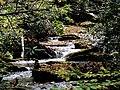 Roaring Fork Falls Black Mountain Campground Pisgah Nat Forest NC 4336 (37916998832).jpg