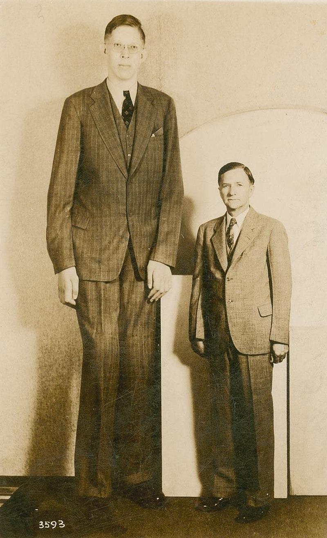 El hombre más alto de la historia, Robert Pershing Wadlow
