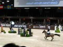 Fichier:Roger-Yves Bost, Bordeaux World Cup Jumping 2014.webm
