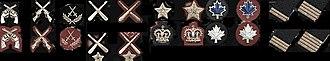 Royal Military College Saint-Jean - RMC Saint-Jean badges (2011)
