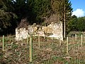 Ruin at Ford Common - geograph.org.uk - 354640.jpg