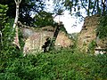 Ruin near the Avon - geograph.org.uk - 1012695.jpg