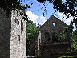 Ruin of pruemerburg castle pruemzurlay germany.jpg
