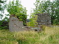 Ruins at Skerrow Halt - geograph.org.uk - 550955.jpg