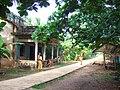 Rural Soc Trang2.JPG