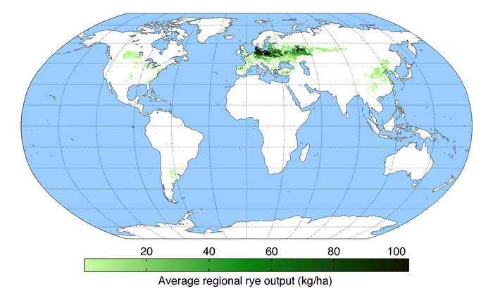 Rye Production map
