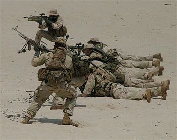 Image of Navy SEALs training