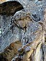 SSI- Panteón Guirao- Ángel que guarda la entrada a la cripta (trasera del monumento) (23468245899).jpg