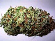 Марихуана wiki удобрения для почвы марихуаны