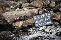 S of Mt Jackson mafic breccia vein in felsic breccia.jpg