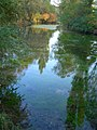 Salza Quelle - panoramio.jpg