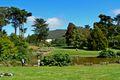 San Francisco Botanical Garden Great Lawn 2.jpg