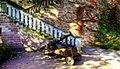 Schlossgarten (1710406755).jpg