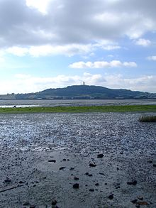 Photograph on Scrabo Hill with tower seen from far