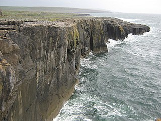 Ailladie Limestone sea cliff in the Burren, Ireland