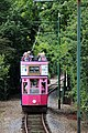 Seaton Tram - panoramio (2).jpg