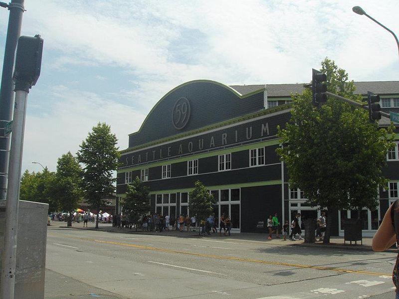 File:Seattle Aquarium original picture.jpg