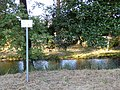 Selke km 8,5 (Gatersleben) 01.jpg