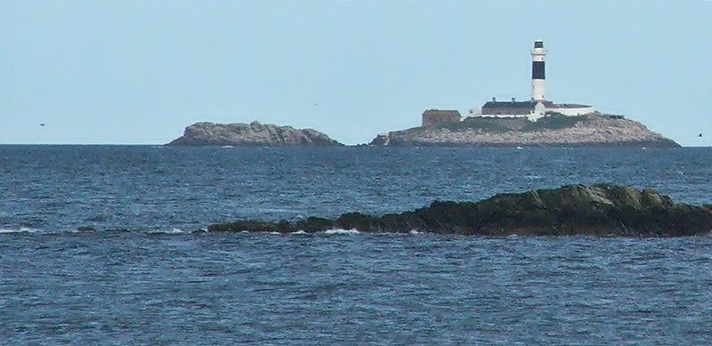 Modern day Rockabill. Image credit: Wikipedia user Jaqian