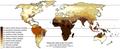 Skin Color Distribution.png