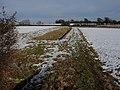 Snowy farmland - geograph.org.uk - 1158489.jpg