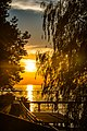 Sonnenuntergang in Bregenz am Bodensee.JPG