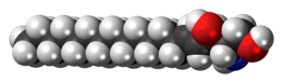 Space-filling model of the sphingosine molecule