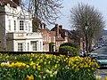 Spring in Castle Street - geograph.org.uk - 384040.jpg