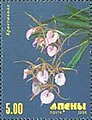 Stamp of Abkhazia - 2000 - Colnect 1004767 - Orchid.jpeg