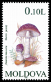 Stamp of Moldova 135 - 2.png
