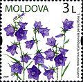 Stamps of Moldova, 017-09.jpg