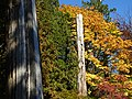 Stanley Park (Inner Harbor) Scene - Vancouver - BC - Canada - 07 (37967347382) (2).jpg